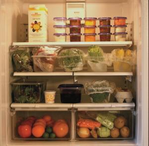 Dian's Refrigerator